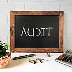 5500 Audit Requirements