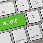 Defined Contribution Plan Auditor